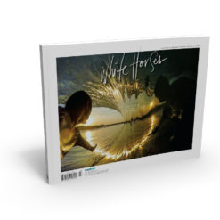 Cover image of White Horses Issue 22