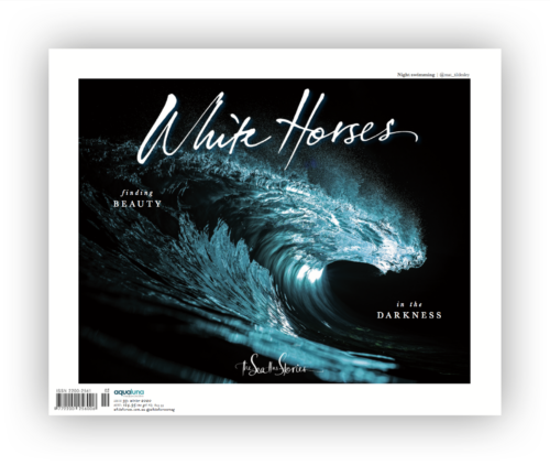 Issue 33 Cover